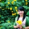 Nguyen Linh's picture