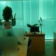 KNVC Office