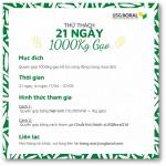 THỬ THÁCH 1000KG GẠO TRONG 21 NGÀY